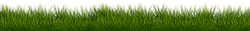Grass Footer Image